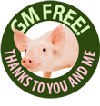 GM-Free-Pig_button.png