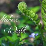 naturewalk250200.png