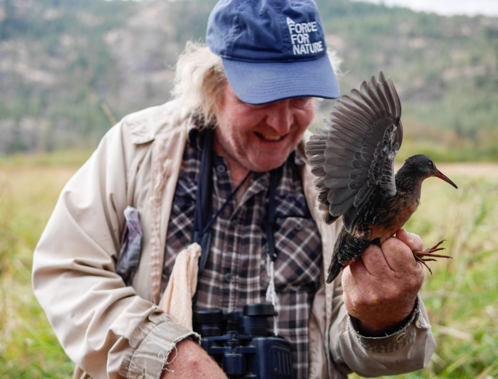 vaseux-lake-bird-observatory-8-of-10
