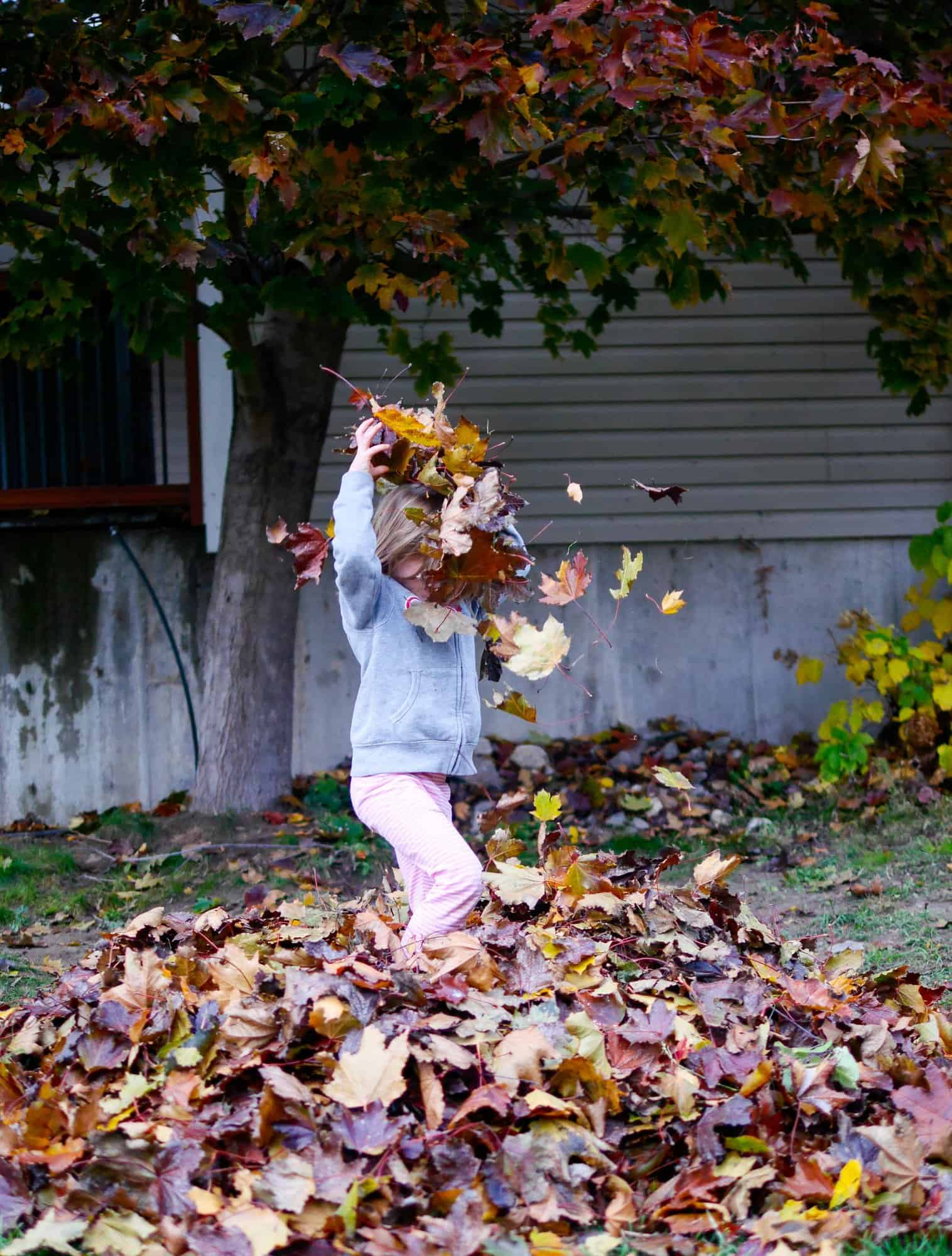 Exploring Nature in our Backyard – Backwoods Mama