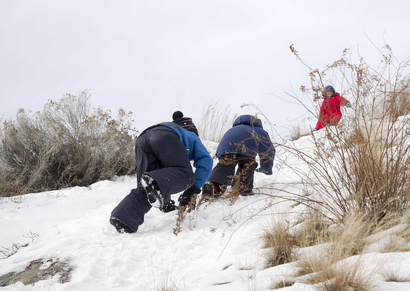 6 Tips For Winter Hiking With Kids Backwoods Mama