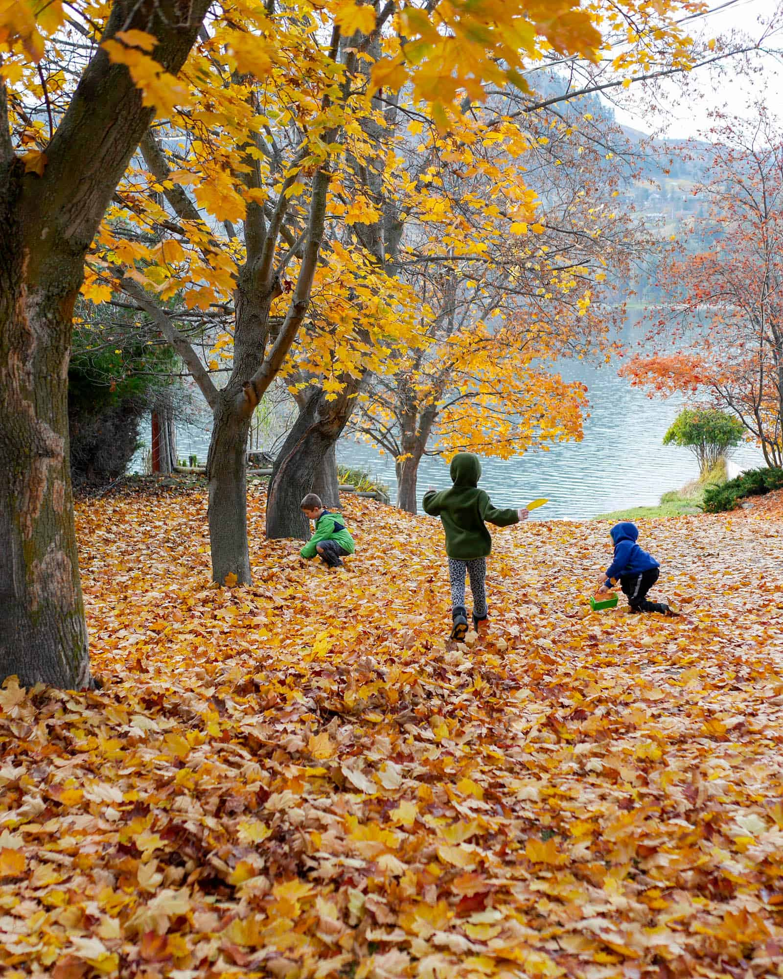 20 Autumn Outdoor Adventures For Families